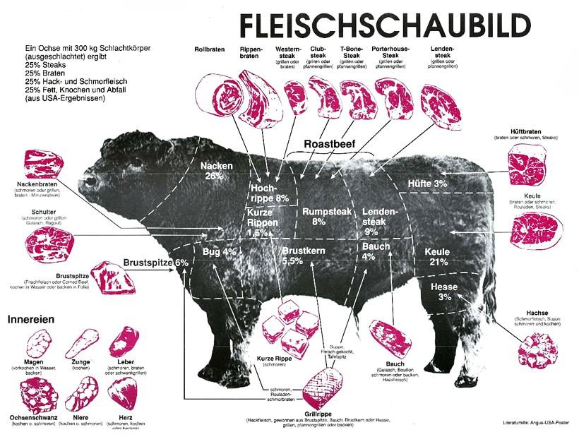 Fleisch Schaubild