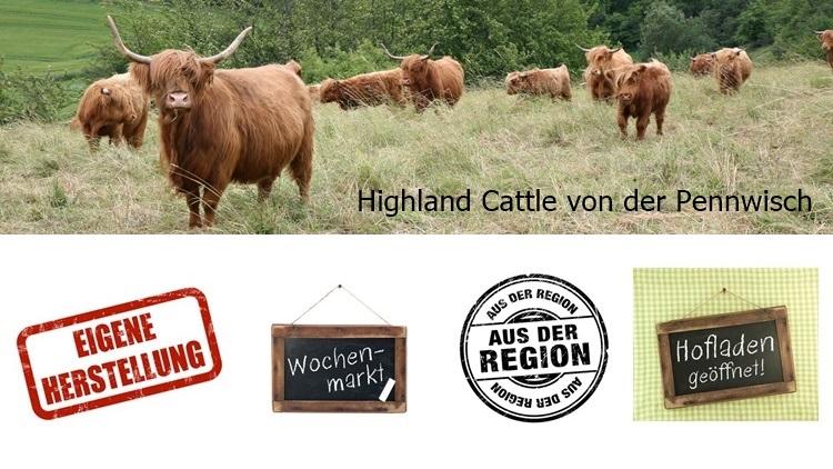 Highland Cattle von der Pennwisch